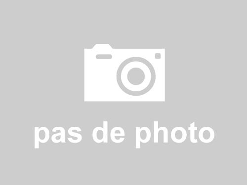 Revente : Condo / Apartment 1159 Rue des Grenats Desjardins (Lévis) QC