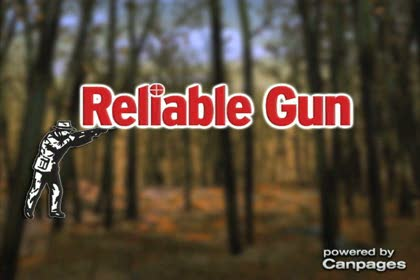 video Reliable Gun