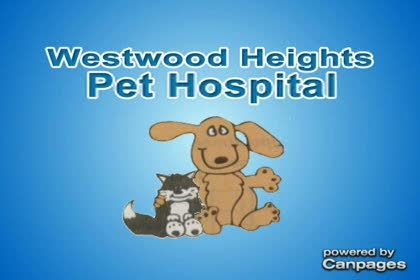 video Westwood Heights Pet Hospital