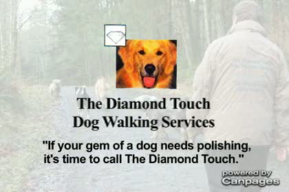 video The Diamond Touch Dog Walking Services