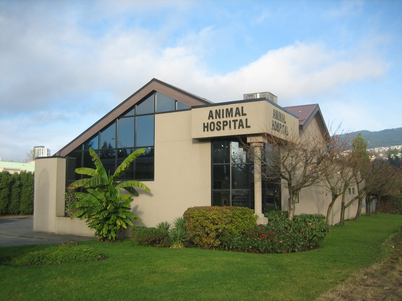 photo Eagle Ridge Animal & Bird Hospital