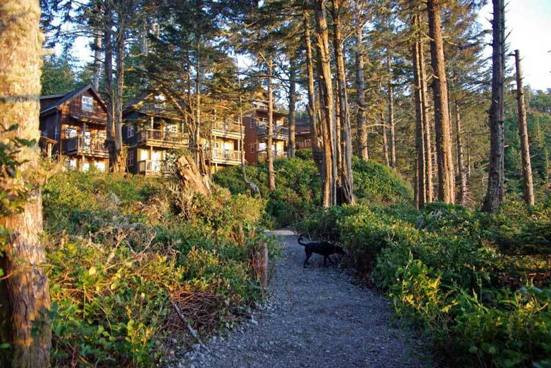 Terrace Beach Resort Ucluelet Bc 1002 Peninsula Rd