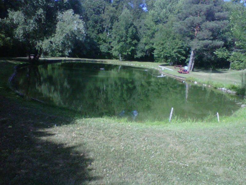 Halton hills trout farm georgetown on 10541 fourth for Trout farm fishing near me