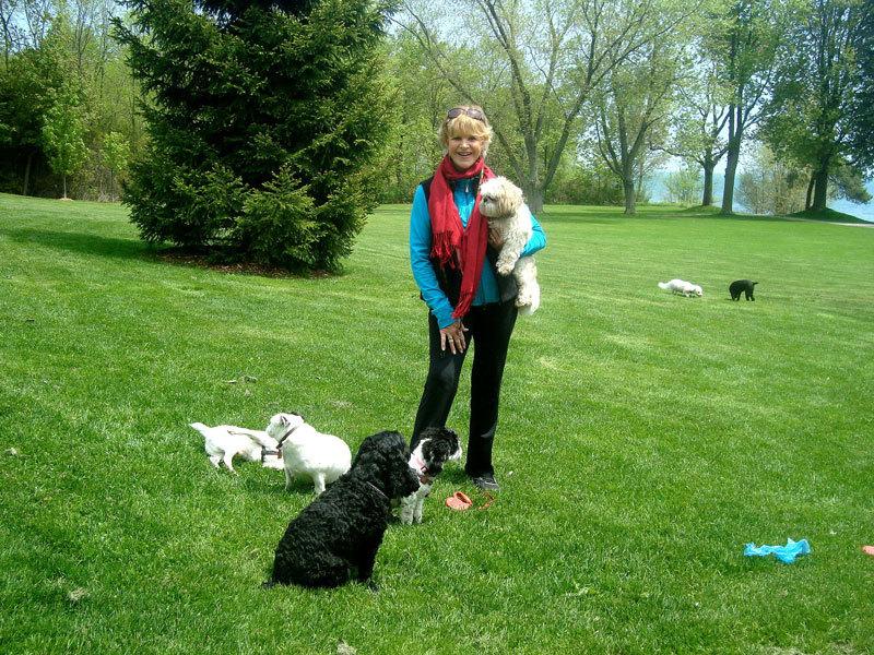 photo Pat's Pets