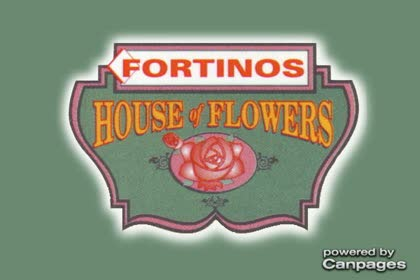 video Fortino's House of Flowers