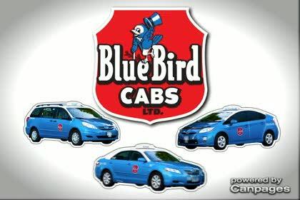 video Blue Bird Cabs Ltd