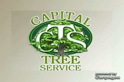 video Capital Tree Service