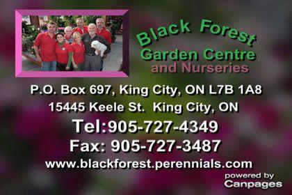 video Black Forest Garden Centre