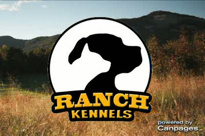 video The Ranch Kennels